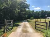 3105 Wild Horse Lane - Photo 59