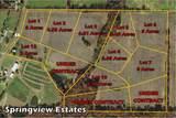 4 Springview Estates - Photo 3