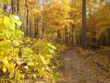 17659 Rockwood Arbor Drive - Photo 17