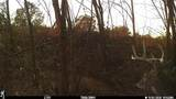 48178 160th Ave - Photo 30