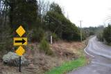 195 Stroup & Mapaville Hematite Road - Photo 9