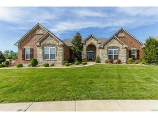 1009 Castleview Court, Saint Charles, MO 63304 (#17010678) :: The Kathy Helbig Group