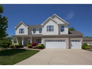 89 Aspen Ridge Ct., Saint Peters, MO 63376 (#17019937) :: The Kathy Helbig Group