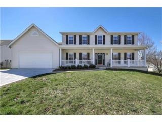 318 Merrimac Downs, Saint Peters, MO 63376 (#17020013) :: The Kathy Helbig Group