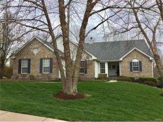 1054 Keystone Trail Drive, Chesterfield, MO 63005 (#17020016) :: The Kathy Helbig Group