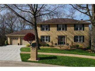 1016 Park Forest Place, Ellisville, MO 63021 (#17025474) :: The Kathy Helbig Group
