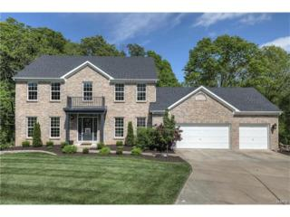 6 Hickory Glen Court, Lake St Louis, MO 63367 (#17027325) :: The Kathy Helbig Group