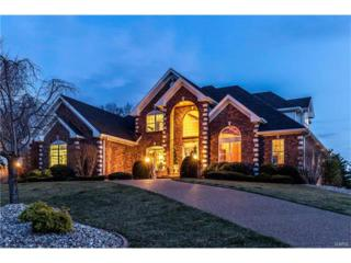 728 Hillenkamp Drive, Weldon Spring, MO 63304 (#17027893) :: Kelly Hager Group | Keller Williams Realty Chesterfield