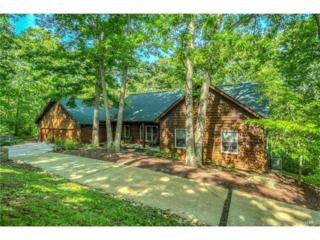 18604 Babler Meadows Drive, Glencoe, MO 63038 (#17028215) :: The Kathy Helbig Group