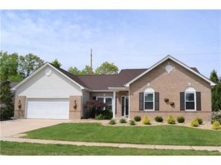 1501 Parsons Bend Court, O Fallon, MO 63366 (#17031258) :: The Kathy Helbig Group