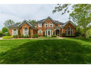 17329 Countryside Manor Parkway, Chesterfield, MO 63005 (#17031665) :: The Kathy Helbig Group