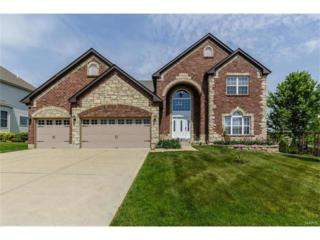 1000 Castleview Court, Saint Charles, MO 63304 (#17031780) :: Clarity Street Realty