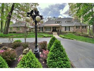 18517 Sassafras Place Drive, Wildwood, MO 63038 (#17032002) :: The Kathy Helbig Group