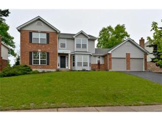 301 Clayton Trails Drive, Ellisville, MO 63011 (#17032170) :: The Kathy Helbig Group