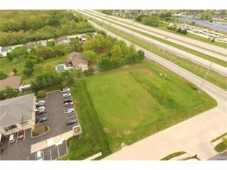 1000 Rondale, Dardenne Prairie, MO 63368 (#17032178) :: The Kathy Helbig Group
