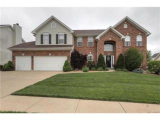 711 Knollshire Way Court, Dardenne Prairie, MO 63368 (#17032368) :: The Kathy Helbig Group