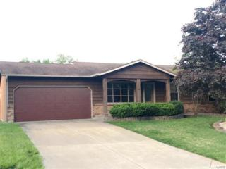 2916 Park Valley Drive, Saint Peters, MO 63376 (#17032497) :: The Kathy Helbig Group