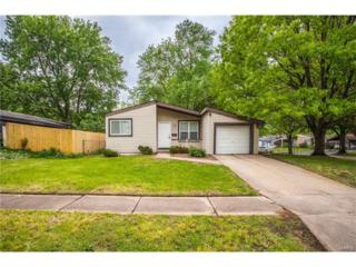 3371 Mowing Green, Florissant, MO 63031 (#17032655) :: The Kathy Helbig Group