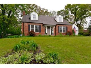 834 S Rock Hill Road, Webster Groves, MO 63119 (#17032668) :: Clarity Street Realty