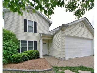 15 Tyler Court, Wentzville, MO 63385 (#17032739) :: Kelly Hager Group   Keller Williams Realty Chesterfield