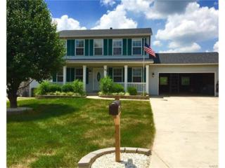 24 Red Cedar Parc Court, O Fallon, MO 63368 (#17032848) :: Kelly Hager Group | Keller Williams Realty Chesterfield