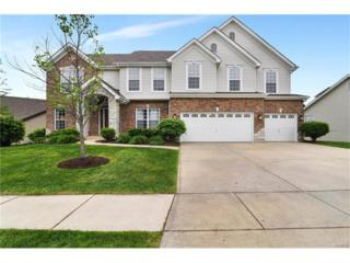 720 Autumnwood Forest, Lake St Louis, MO 63367 (#17033244) :: Kelly Hager Group | Keller Williams Realty Chesterfield