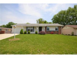 4 Greengage Road, Saint Peters, MO 63376 (#17033293) :: The Kathy Helbig Group