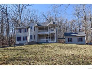 19122 Deep Woods Drive, Glencoe, MO 63038 (#17033325) :: The Kathy Helbig Group
