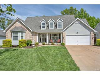 16224 Bay Harbour Court, Grover, MO 63040 (#17033512) :: Kelly Hager Group | Keller Williams Realty Chesterfield