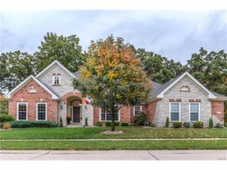 831 Arbor Chase Drive, Ballwin, MO 63021 (#17034810) :: The Kathy Helbig Group