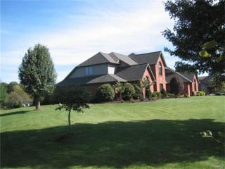 3270 Sugar Lake Drive, Freeburg, IL 62243 (#17034886) :: Clarity Street Realty