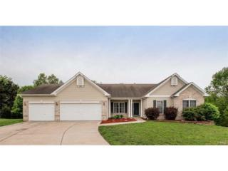 425 Boulder Creek Drive, Wentzville, MO 63385 (#17034983) :: Kelly Hager Group | Keller Williams Realty Chesterfield