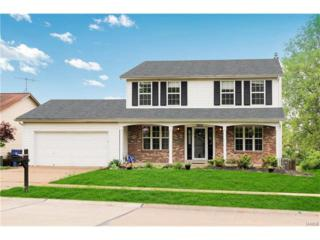 3852 Hope Haven, Florissant, MO 63034 (#17035106) :: Clarity Street Realty