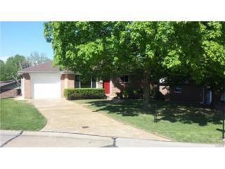 813 Ann Lynn Court, St Louis, MO 63125 (#17035234) :: Clarity Street Realty