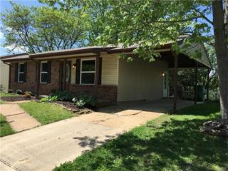 2373 Water Tower Road, High Ridge, MO 63049 (#17035302) :: Clarity Street Realty