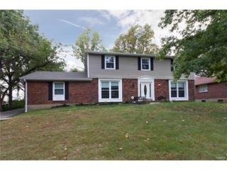 12110 Ladue Heights Drive, St Louis, MO 63141 (#17035344) :: Clarity Street Realty