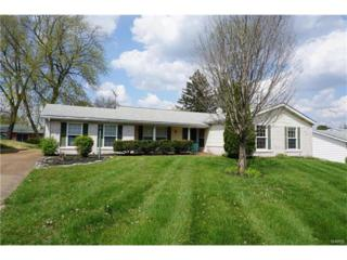 3965 Woodcrest, Florissant, MO 63033 (#17035458) :: Clarity Street Realty