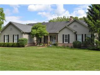 17348 Radcliffe Place Drive, Wildwood, MO 63025 (#17036338) :: Gerard Realty Group