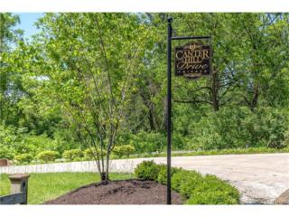 1 Canter Hill Drive, Ladue, MO 63124 (#17038615) :: Gerard Realty Group