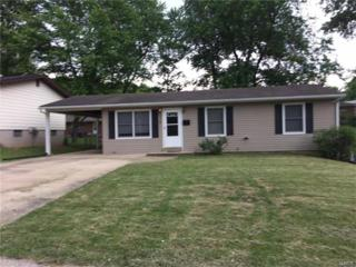 414 S Pam Avenue, Saint Charles, MO 63301 (#17040624) :: Gerard Realty Group