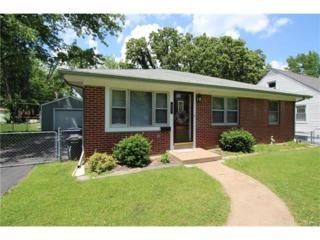 951 Briarton Drive, St Louis, MO 63126 (#17041297) :: Gerard Realty Group