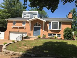 9553 General Lee Drive, Unincorporated, MO 63126 (#17041513) :: Gerard Realty Group
