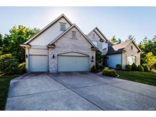 16795 Baxter Pointe Court, Chesterfield, MO 63005 (#17043259) :: Gerard Realty Group