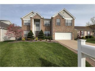 1246 Cold Spring Drive, O Fallon, MO 63368 (#17001848) :: The Kathy Helbig Group