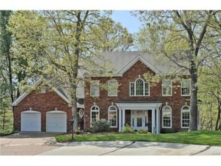 404 Bluff Meadow Drive, Ellisville, MO 63021 (#17031119) :: The Kathy Helbig Group