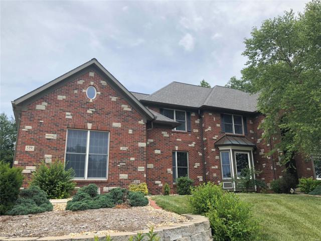 129 Fox Hill Court, Edwardsville, IL 62025 (#17024918) :: Fusion Realty, LLC