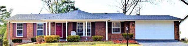 1439 Orchard Lakes Drive, St Louis, MO 63146 (#17089882) :: PalmerHouse Properties LLC