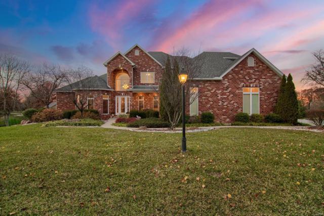 1 Fox Hollow Court, Edwardsville, IL 62025 (#17089949) :: Clarity Street Realty