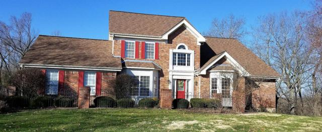 17422 Radcliffe Place Drive, Wildwood, MO 63025 (#18006230) :: RE/MAX Vision
