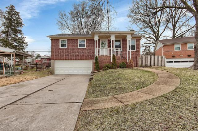 9244 Radiom Drive, St Louis, MO 63123 (#18010728) :: The Becky O'Neill Power Home Selling Team